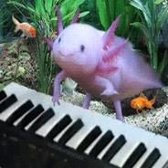 SuN -axolotl-
